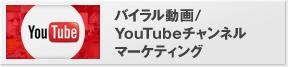 バイラル動画/YouTubeチャンネルマーケティング